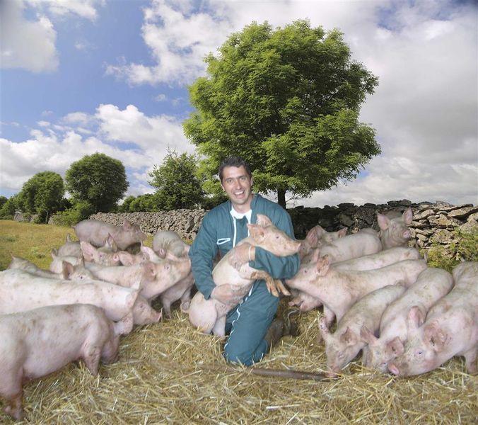 La ferme des cochons gourmands-1