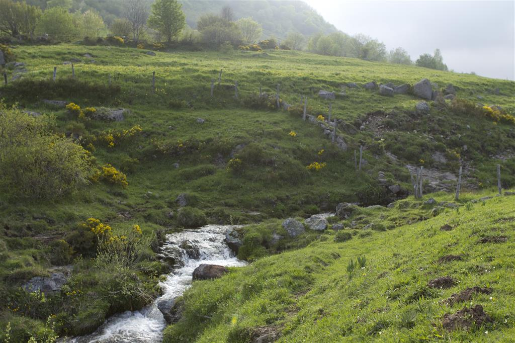 Plomb du Cantal et Col de Prat de Bouc-9