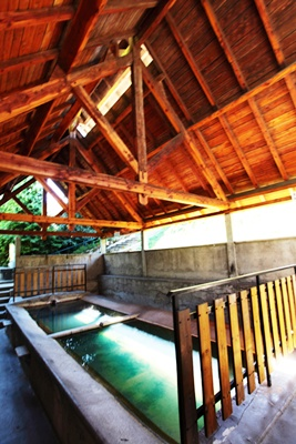 Hot water washhouse-3