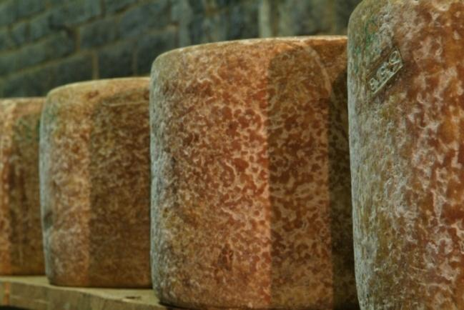 "Dairy ""Fromagerie des Monts du Cantal""-1"