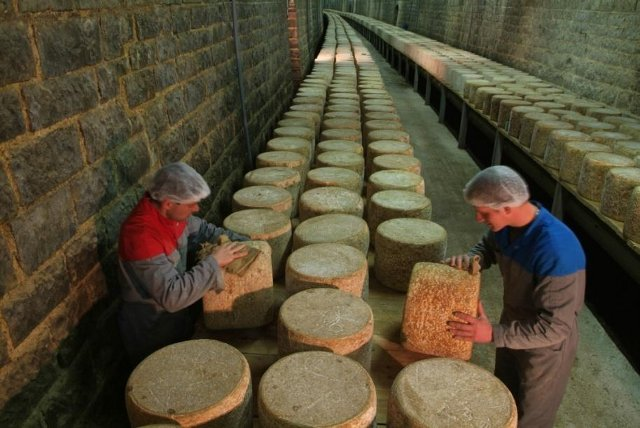"Dairy ""Fromagerie des Monts du Cantal""-2"