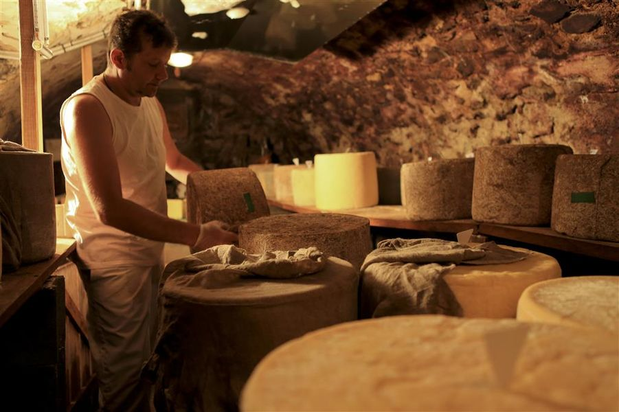 "Dairy ""Fromagerie des Monts du Cantal""-3"