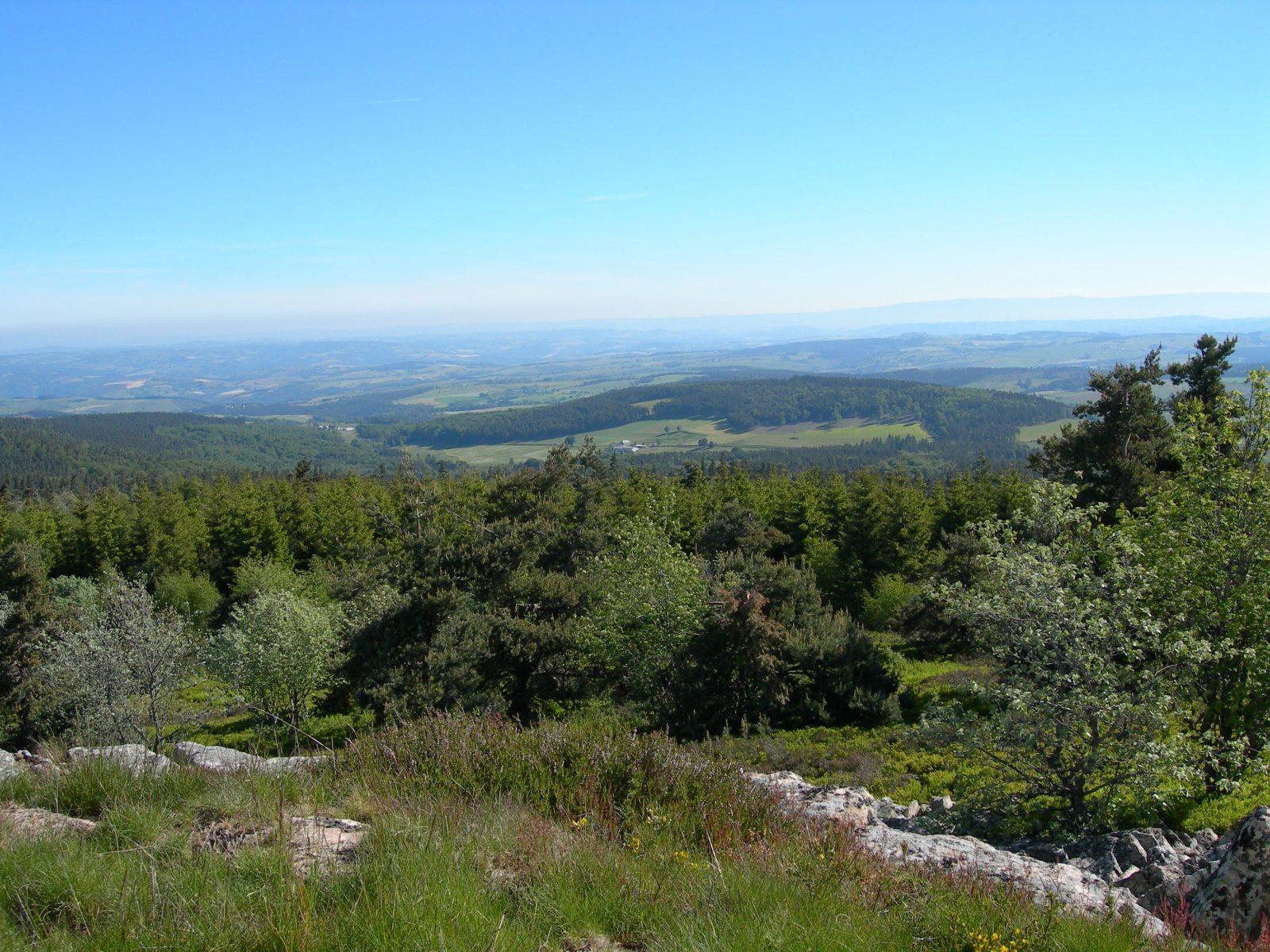 "Puy de la Tuile peak and ""apprenti botaniste"" discovery path-4"
