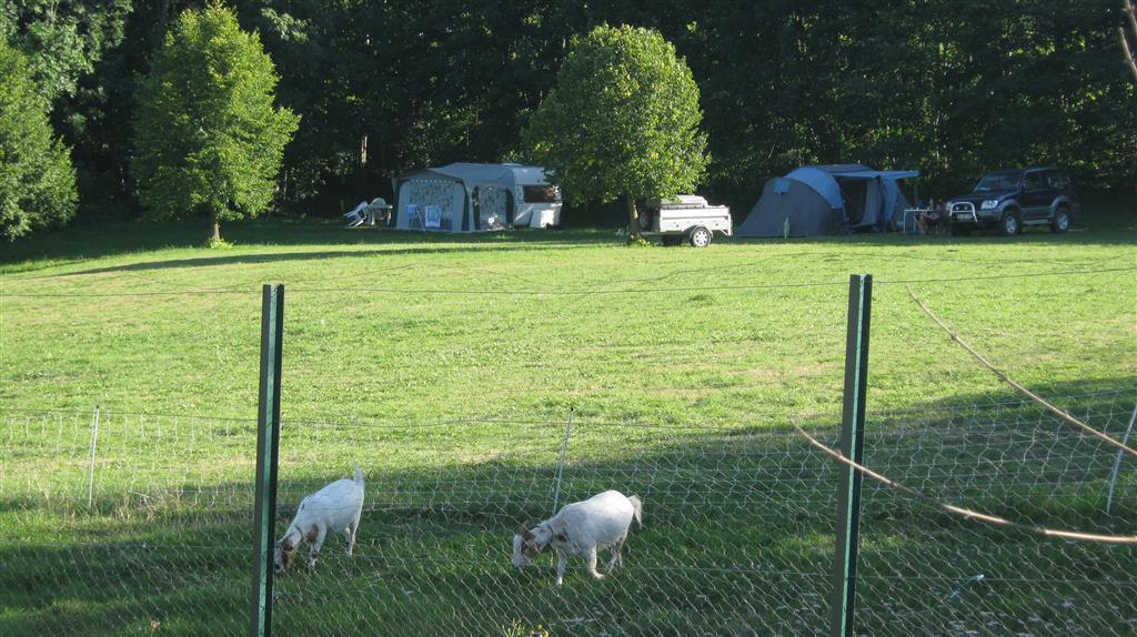 Ferme Le Ruisselet Camping à la ferme-9