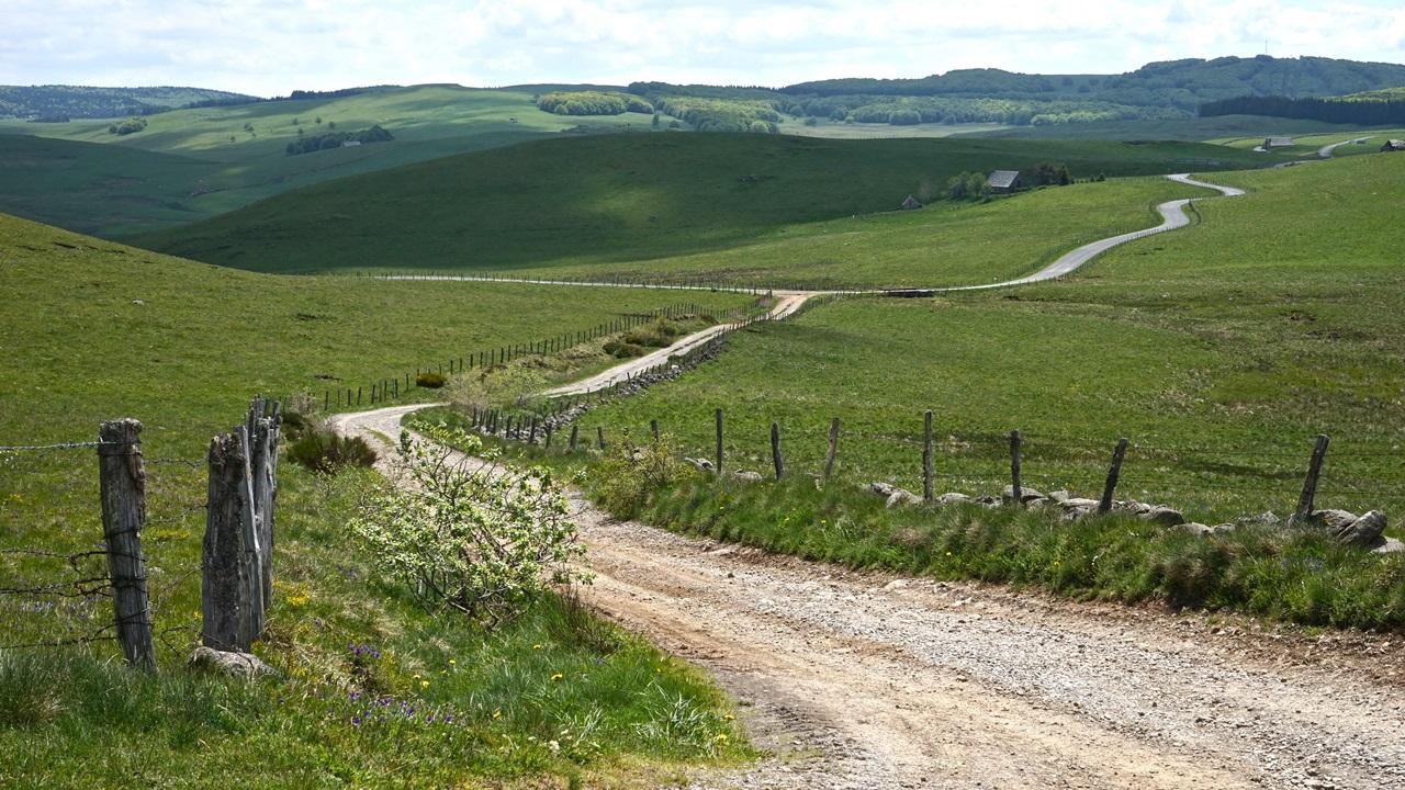 "Road trip ""Aubrac Cantalien""-2"