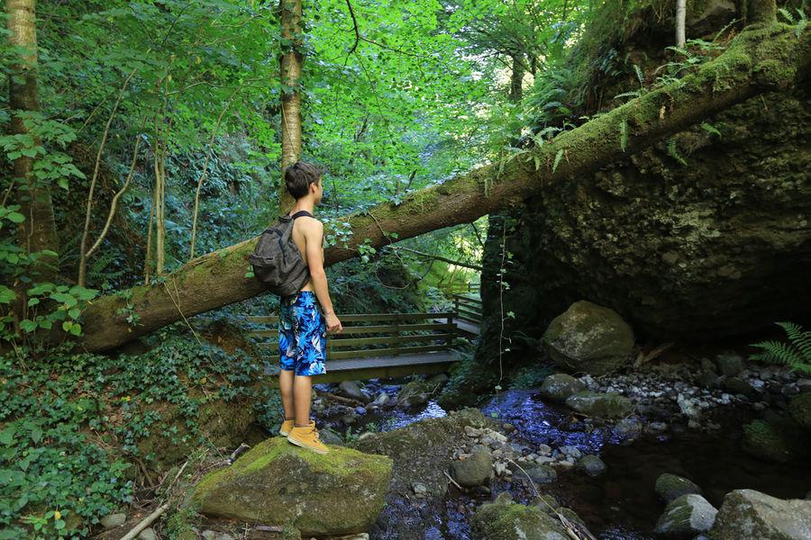 Waterfall of La Borie-2