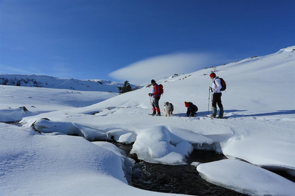 Prat de Bouc Haute Planèze Nordic Skiing Area-1