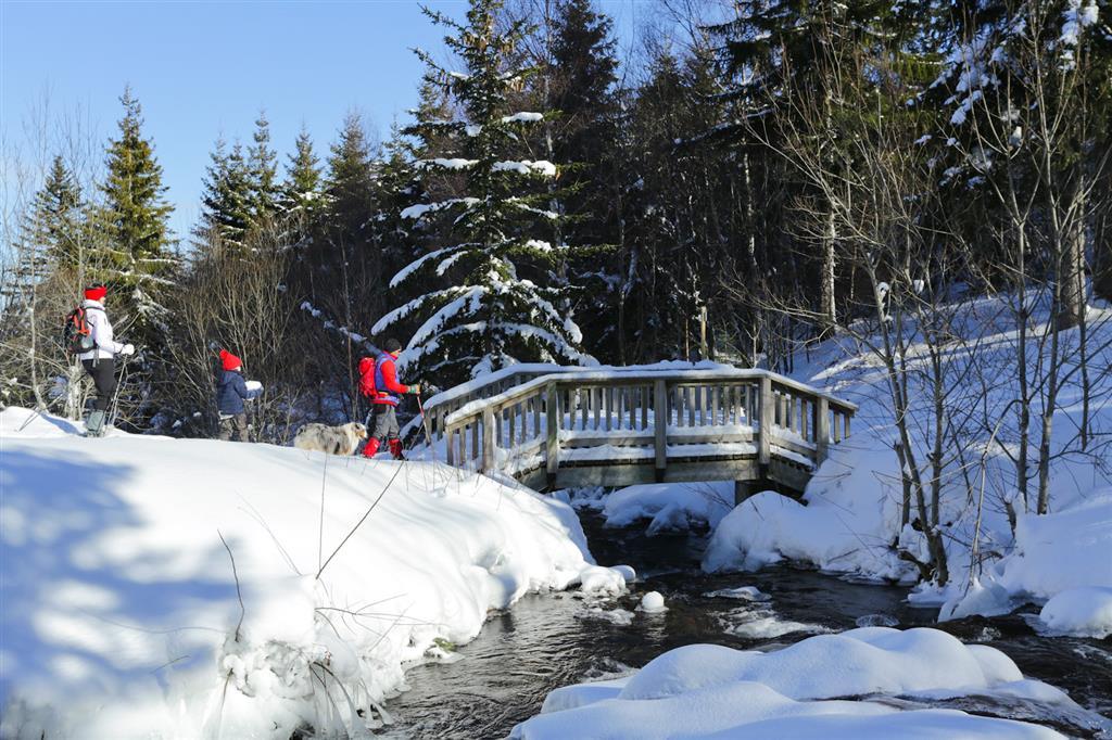 Prat de Bouc Haute Planèze Nordic Skiing Area-5