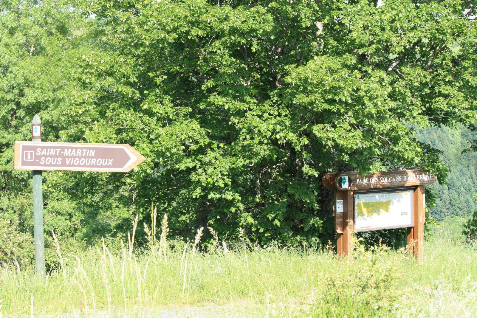 Site of Saint-Martin-4