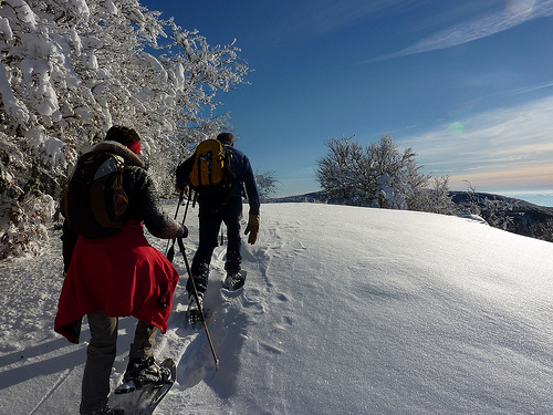 Walking and hiking : Accompagnateurs des Monts d'Aubrac-3
