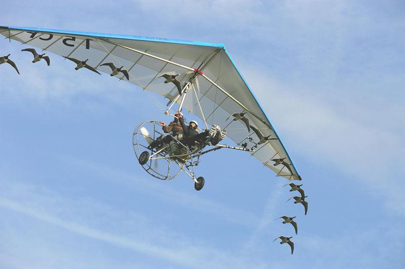 Voler avec les oiseaux-8