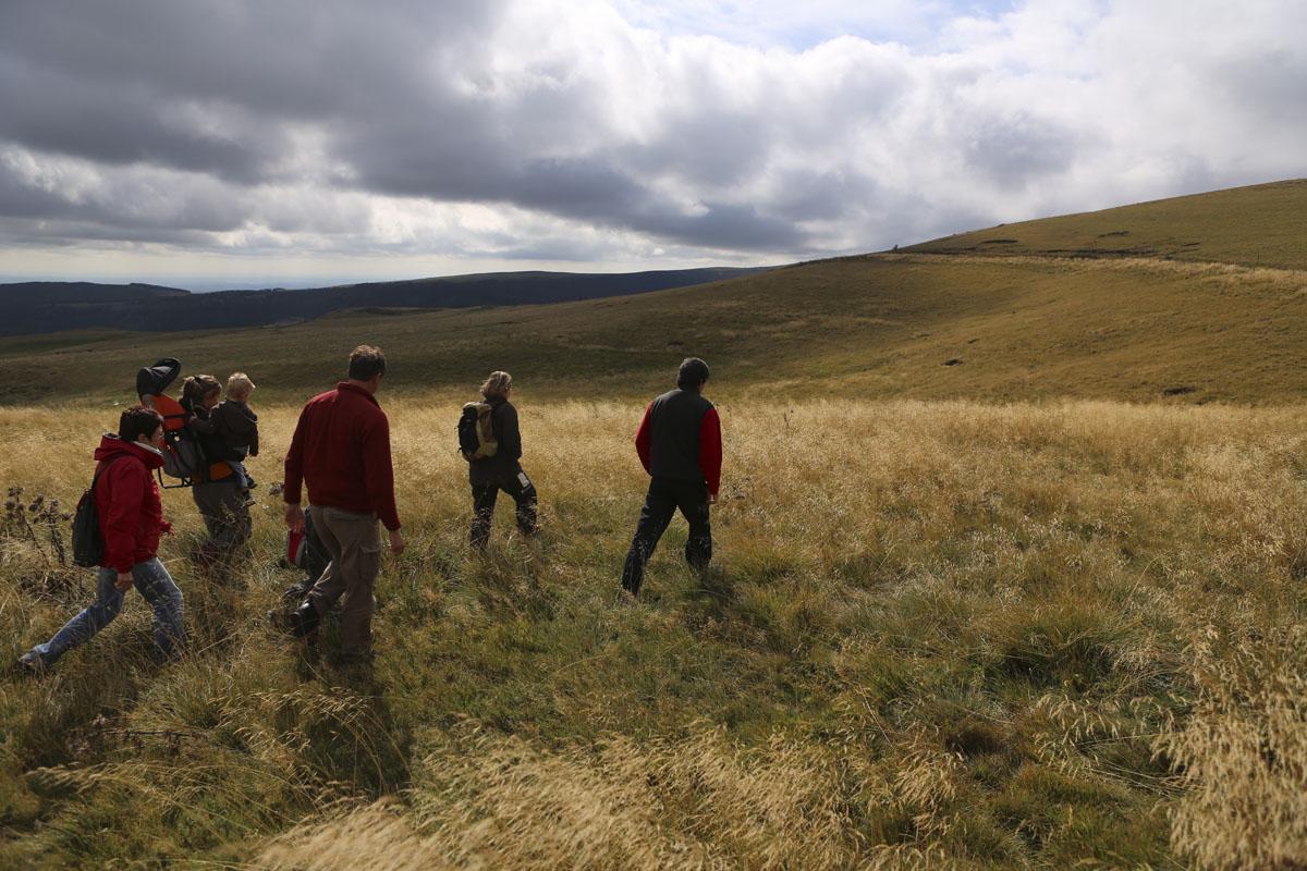 Randonnées pédestres accompagnées de Pierrefort-1