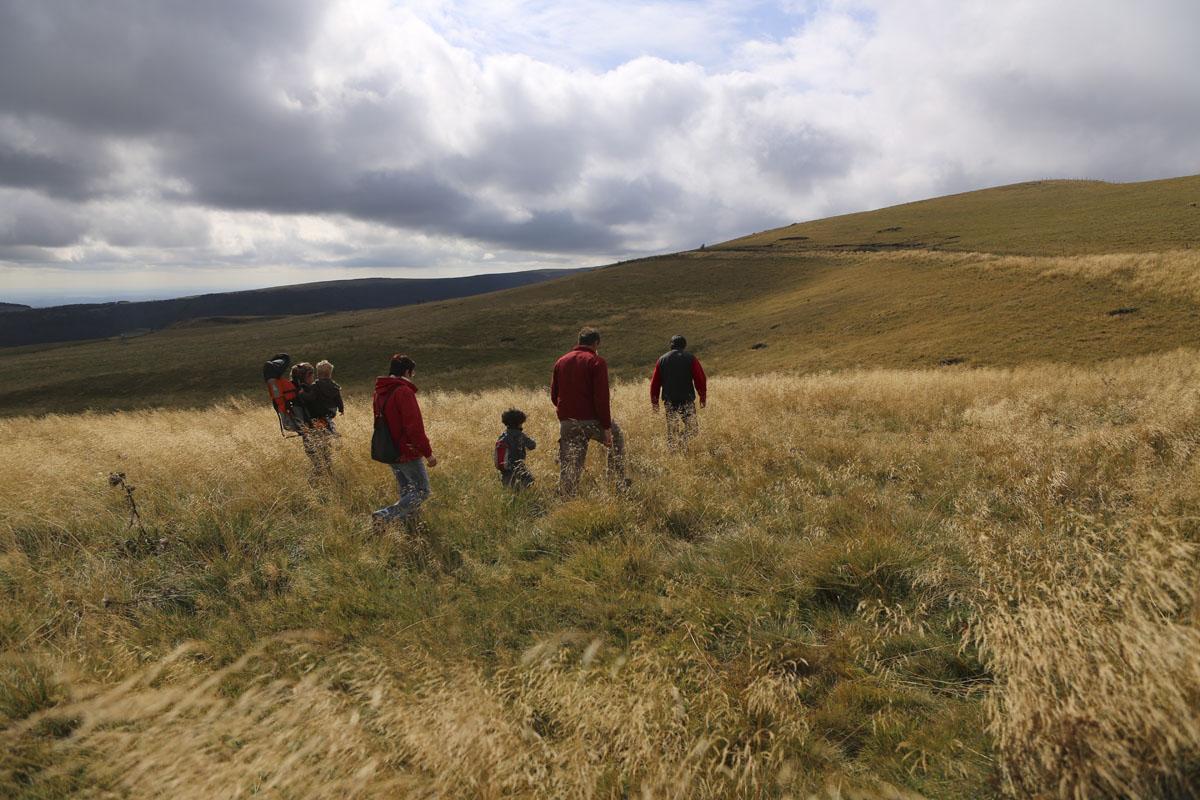 Randonnées pédestres accompagnées de Pierrefort-2