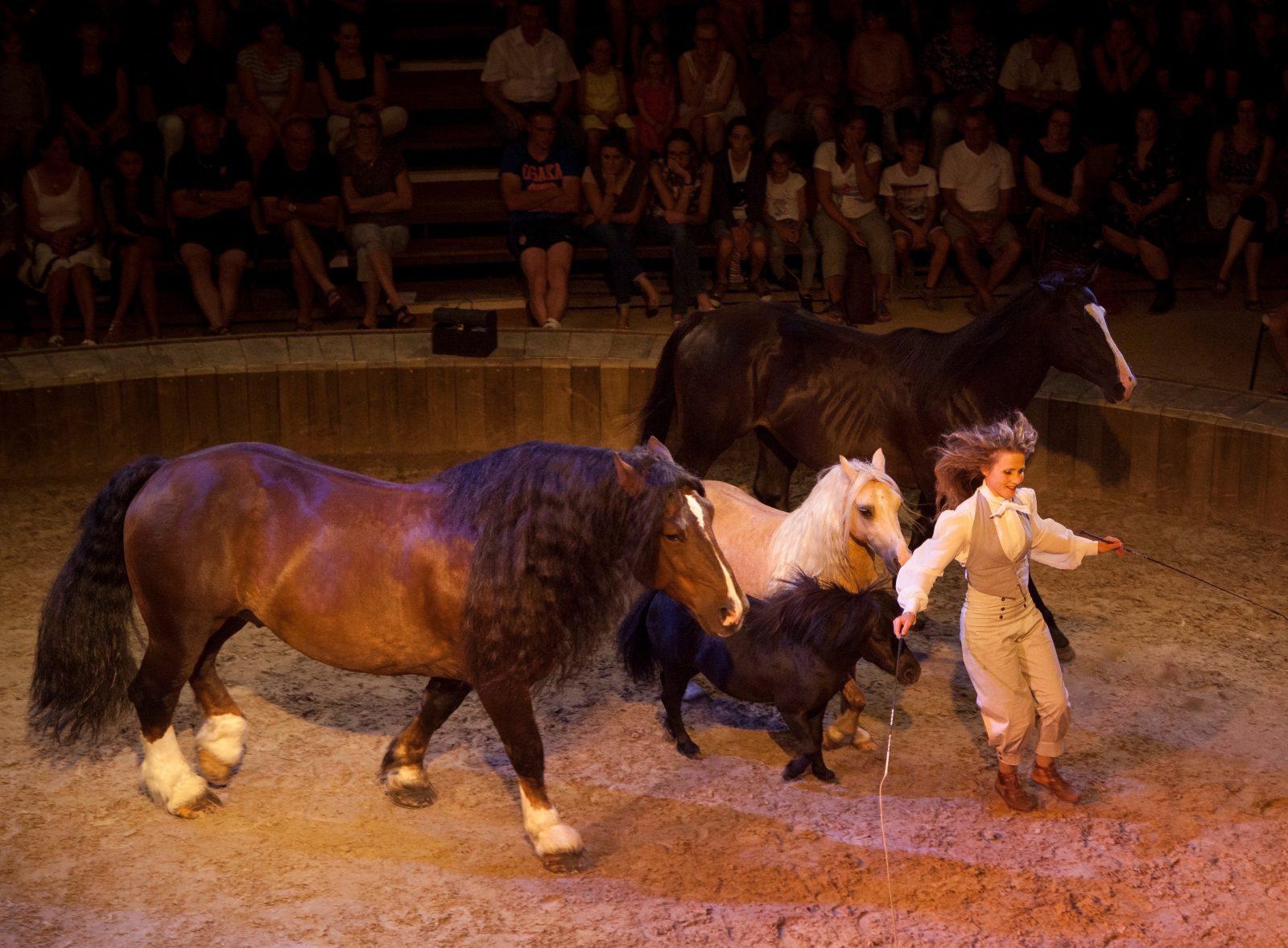 Spectacle cabaret Equestre-4
