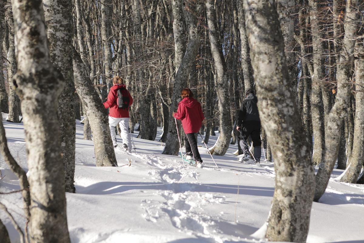 Location matériel sports d'hiver
