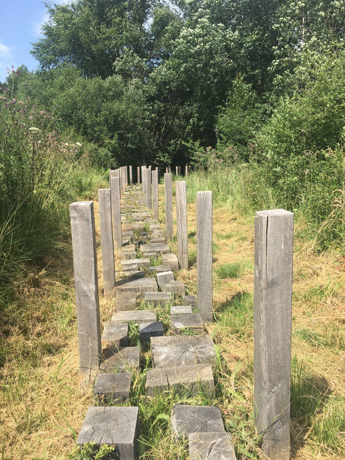 Sentier de découverte de Belvezet-4