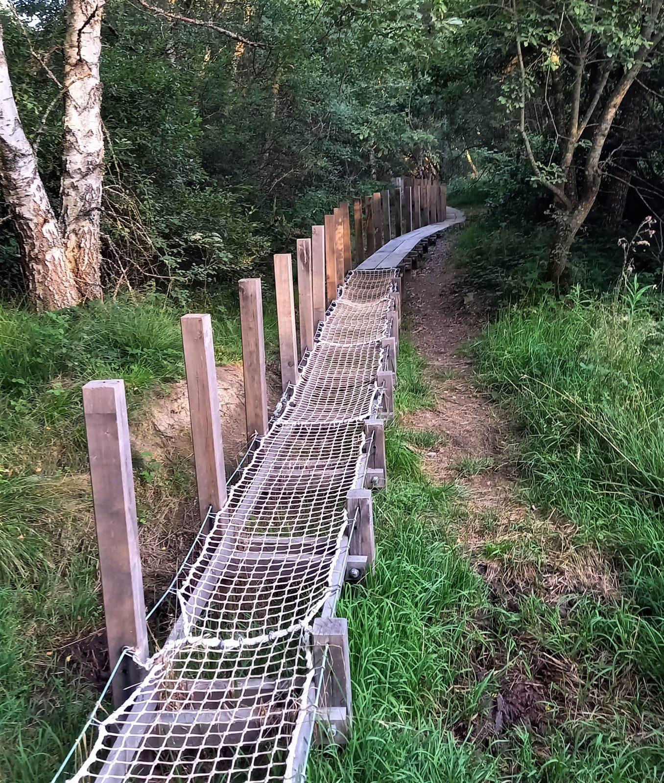 Sentier de découverte de Belvezet-8