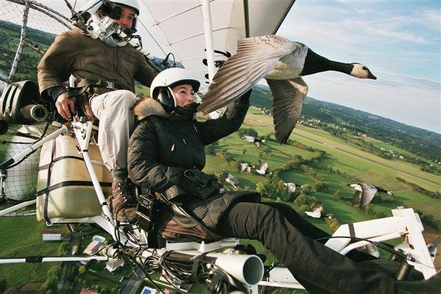 Voler avec les oiseaux-7