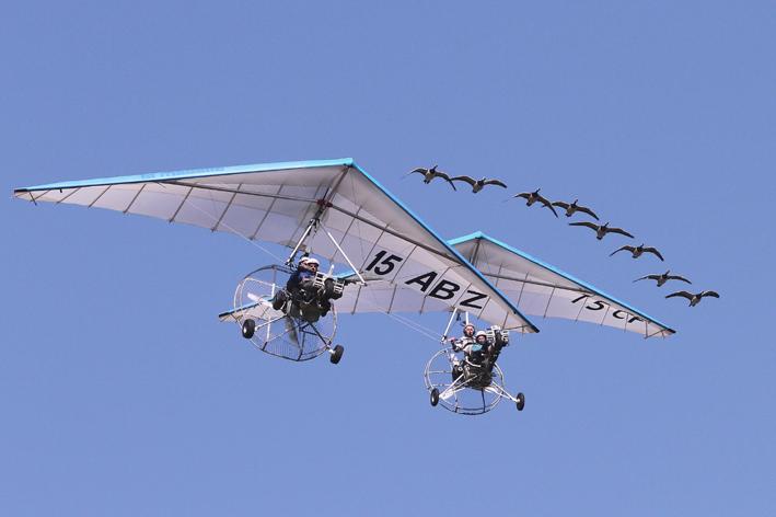 Voler avec les oiseaux-9