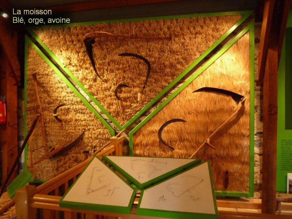 Musée de l'agriculture Auvergnate-13
