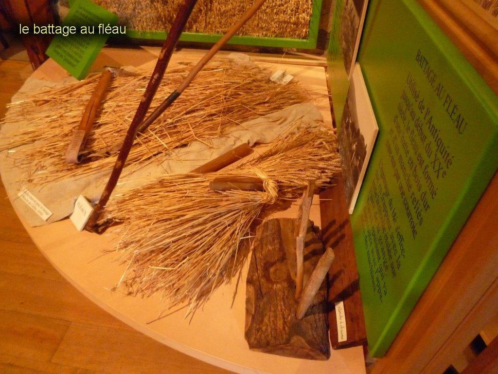 Musée de l'agriculture Auvergnate-14