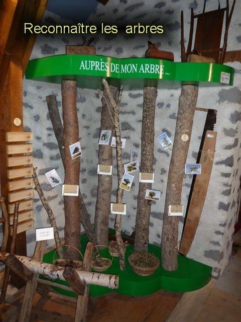 Musée de l'agriculture Auvergnate-15