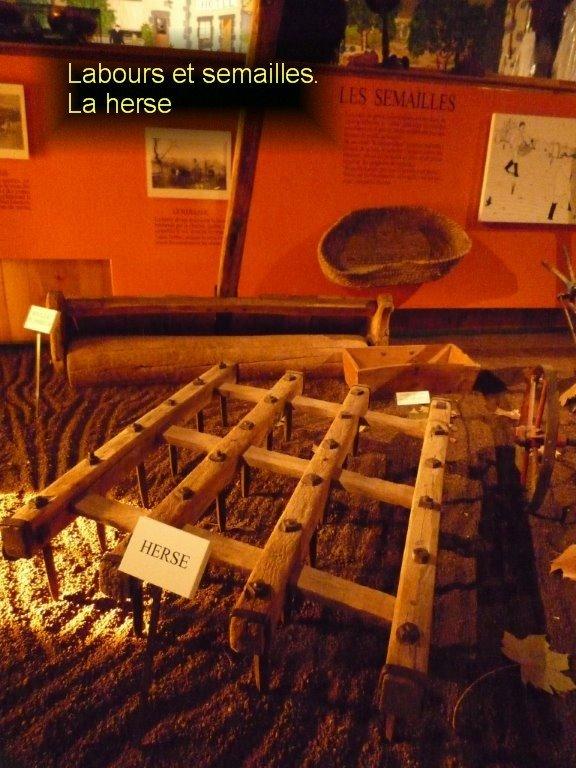Musée de l'agriculture Auvergnate-16