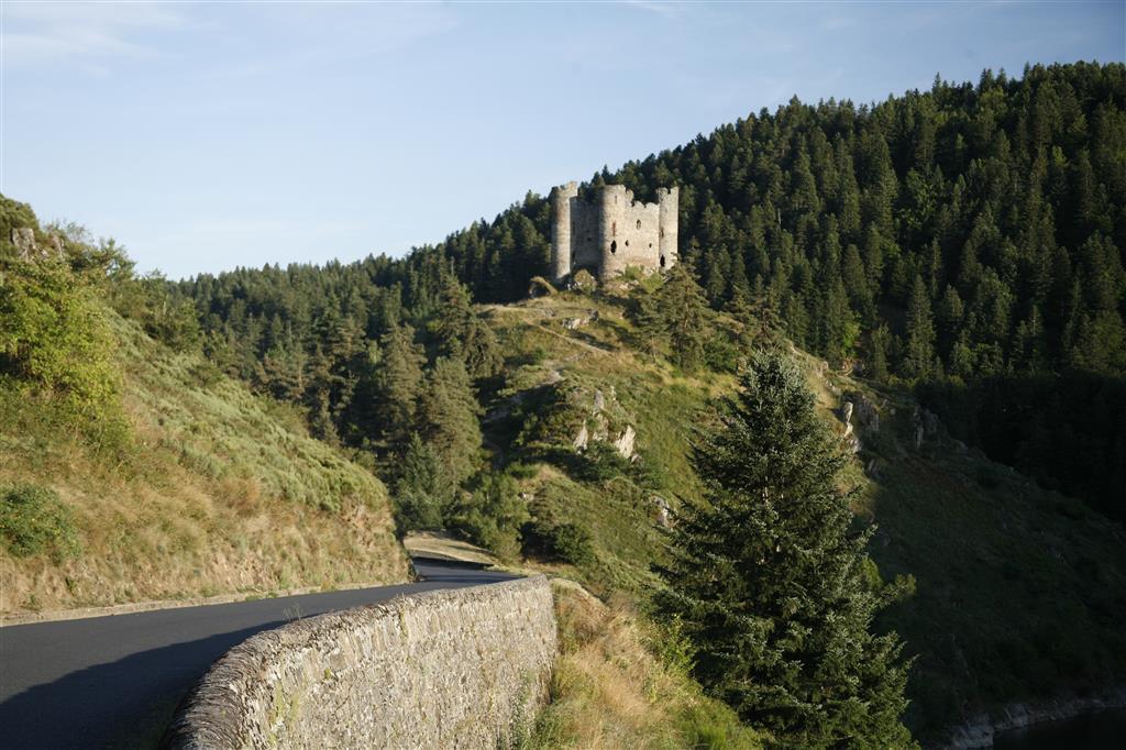 Site et château d'Alleuze-3