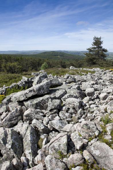 Bureau des Accompagnateurs des Monts d'Aubrac-7