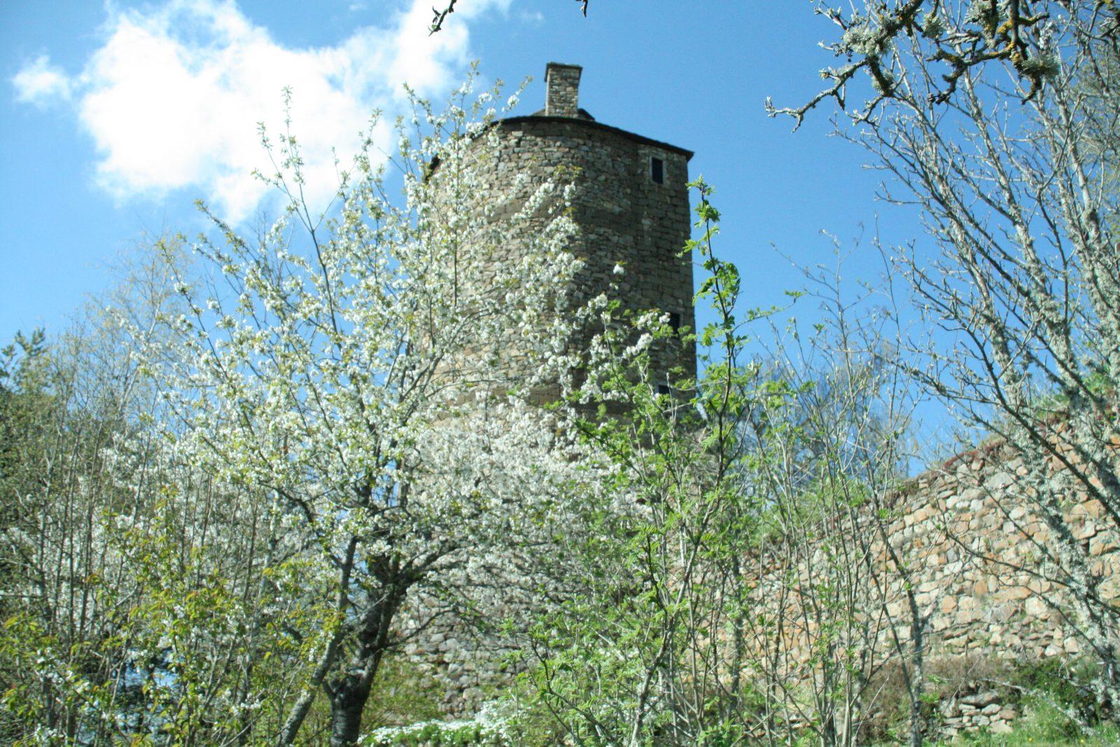 Jardin de Saint-Martin – Ecomusée de Margeride-7