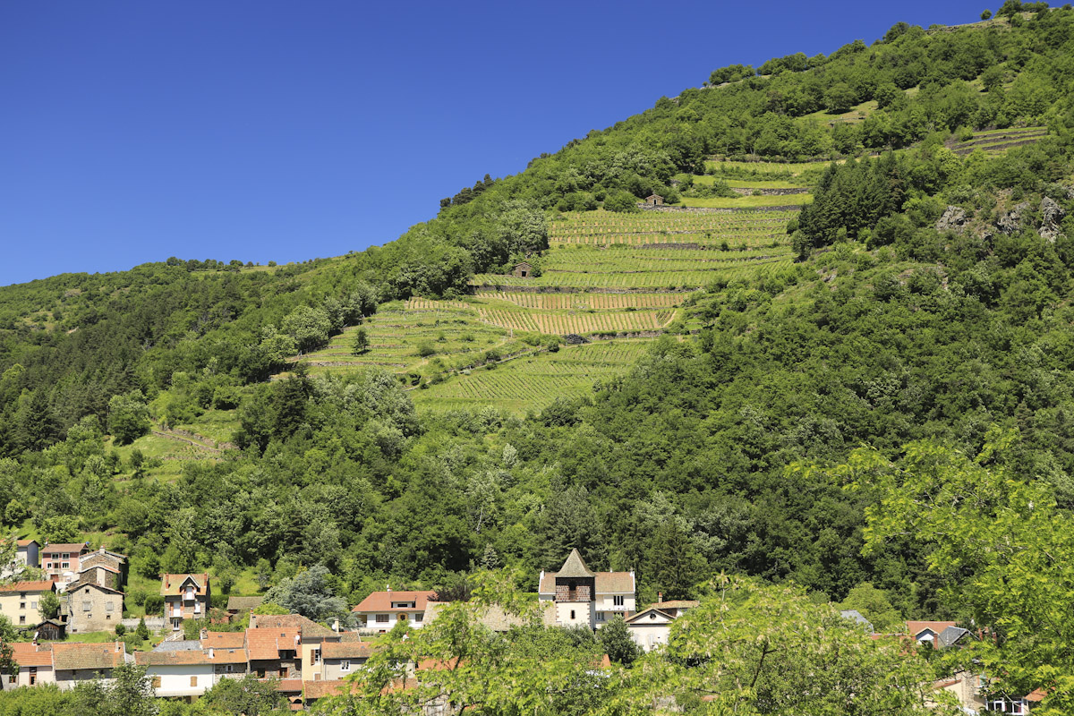 Gastronomie en vallée d'Alagnon-2