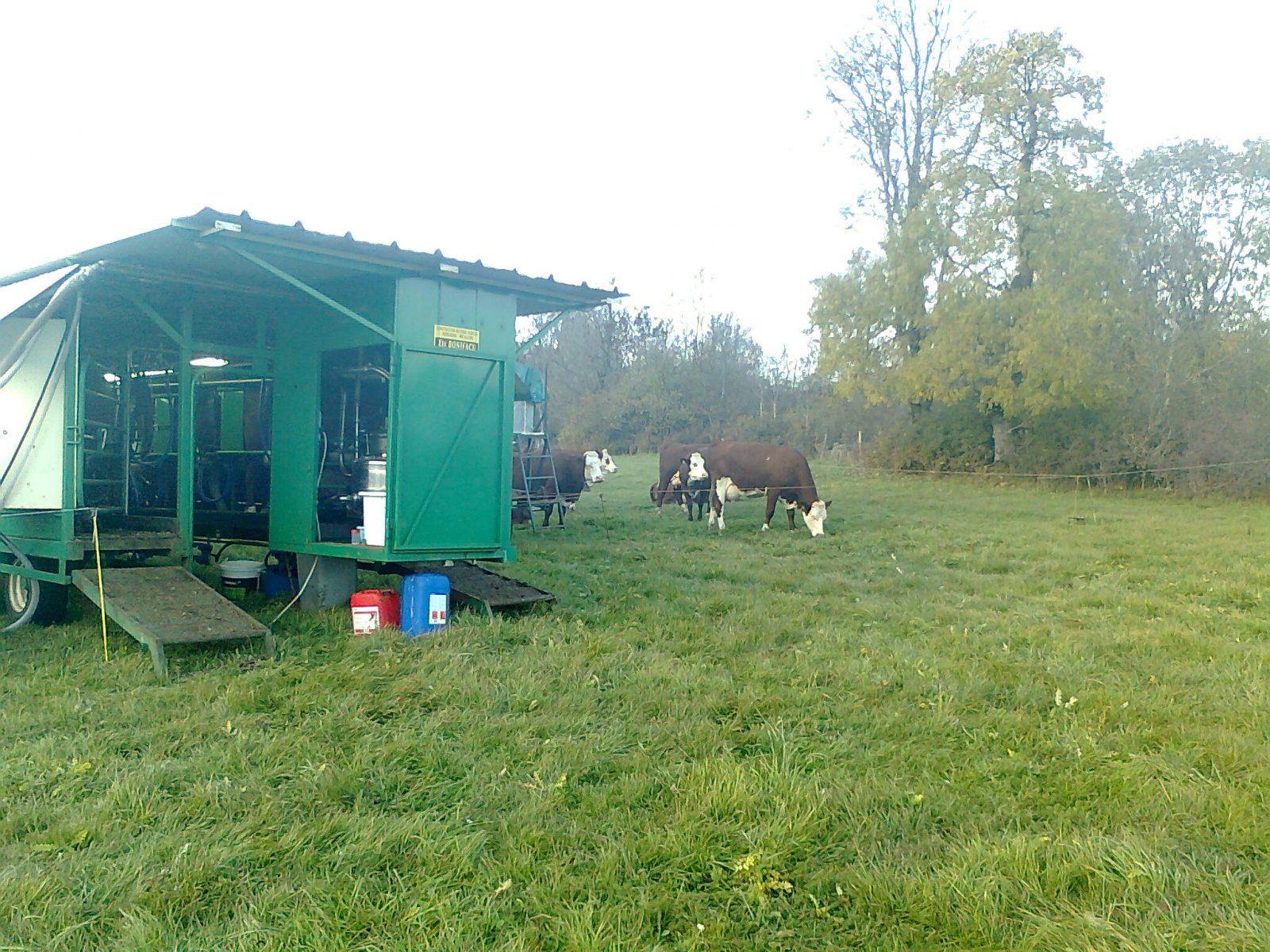 Visite de la ferme du Jarry-8
