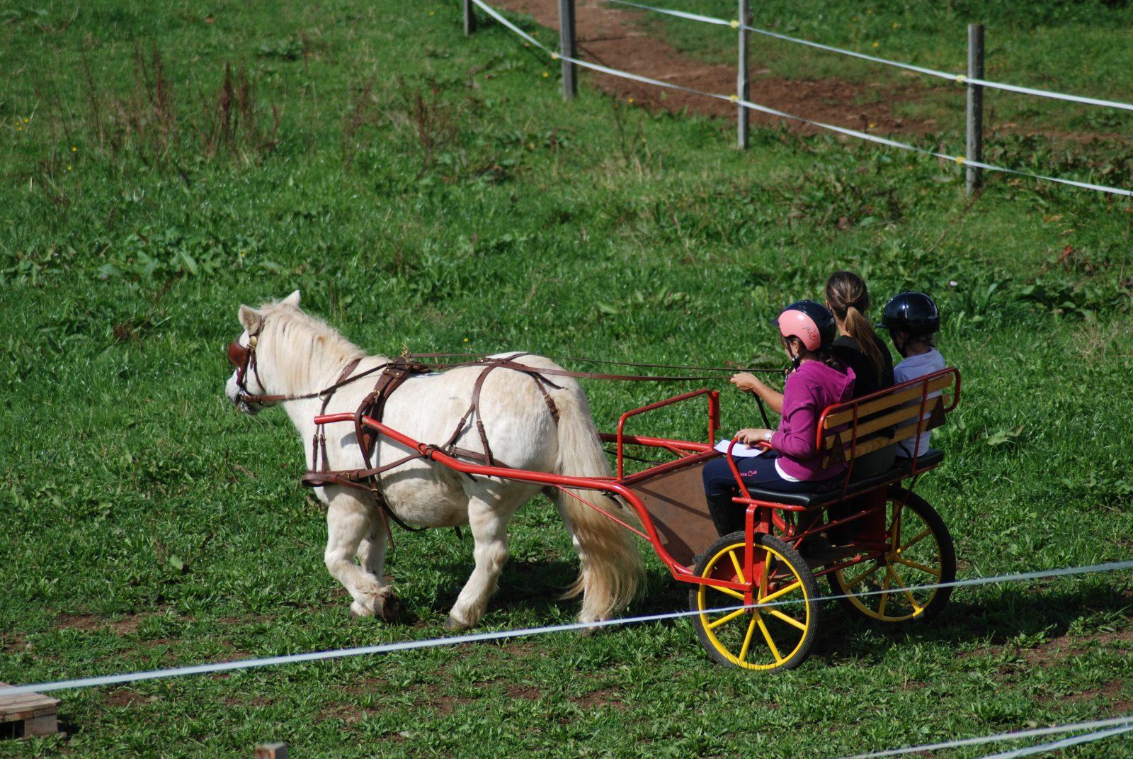 Centre Equestre de Chabridet-7