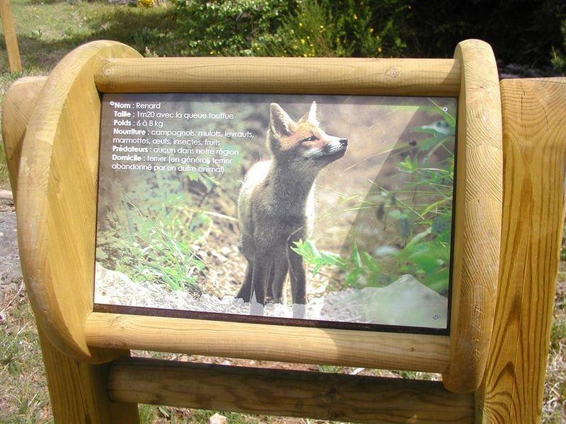Sentier découverte de la faune sauvage-1
