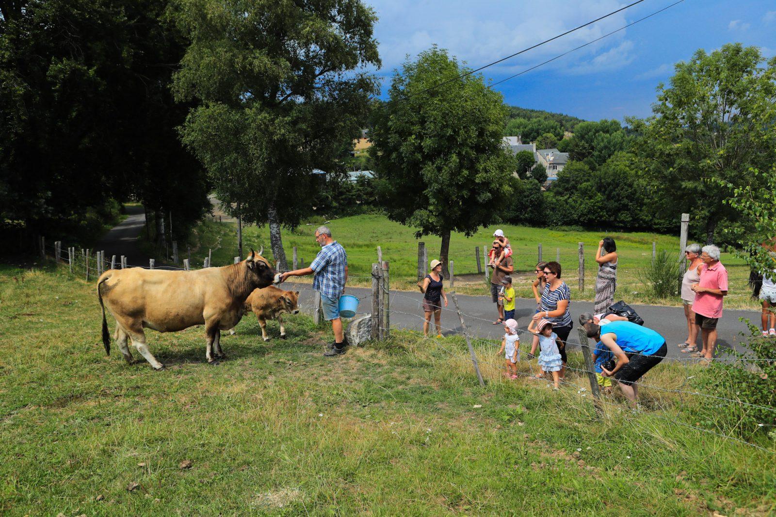 Vivez la ferme en Caldaguès-Aubrac-2
