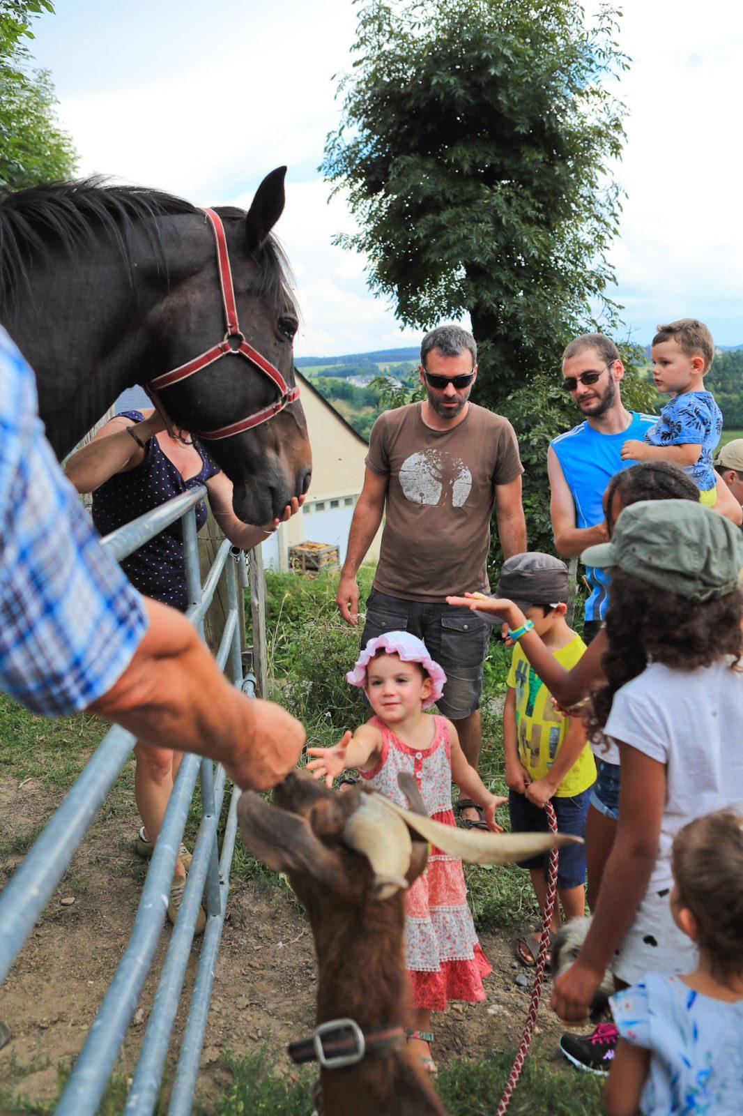 Vivez la ferme en Caldaguès-Aubrac-3