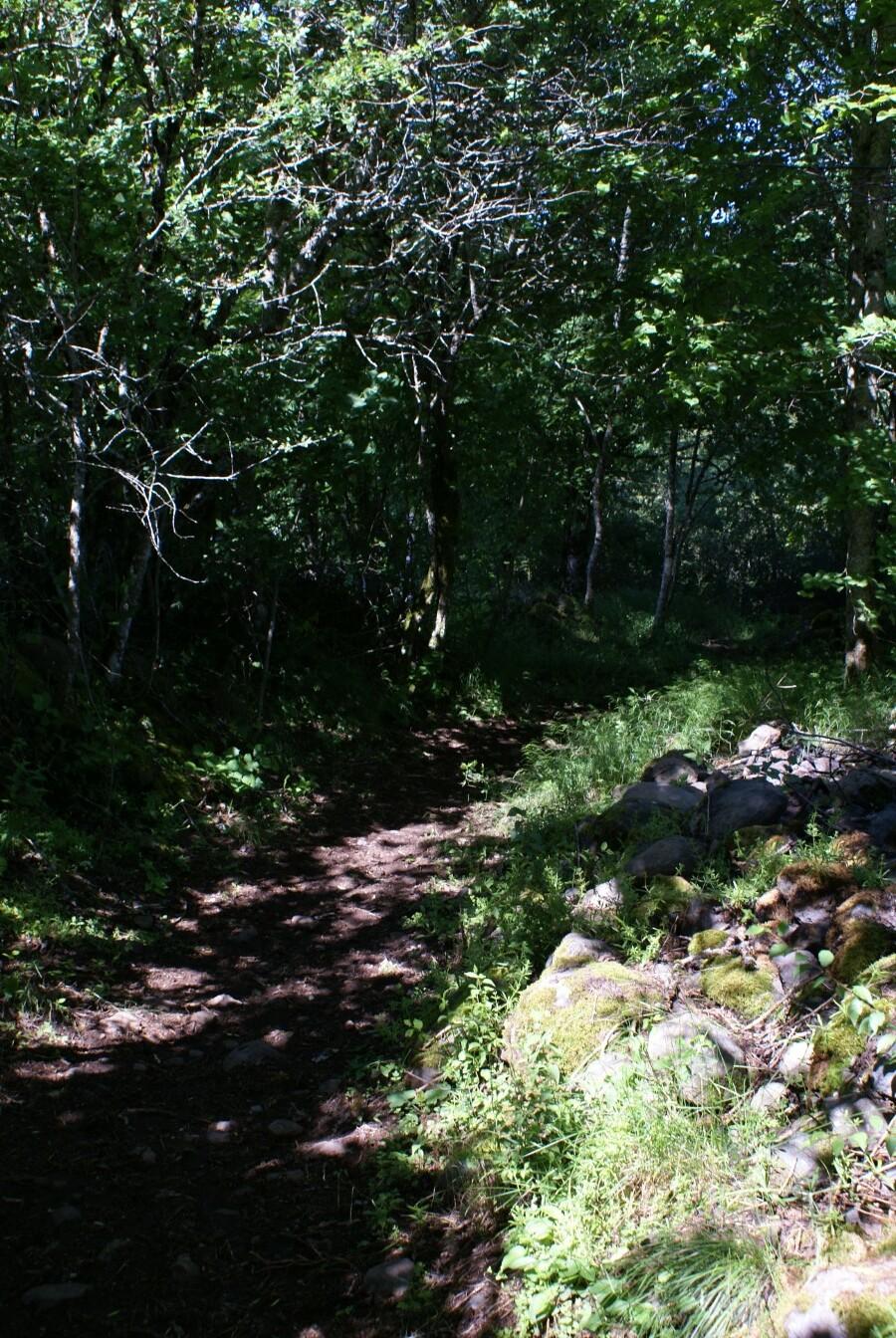 Randonnée La Chaussée de Vigouroux-4