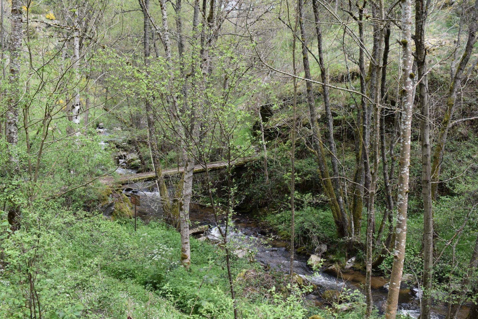 Randonnée Prat-Long-8