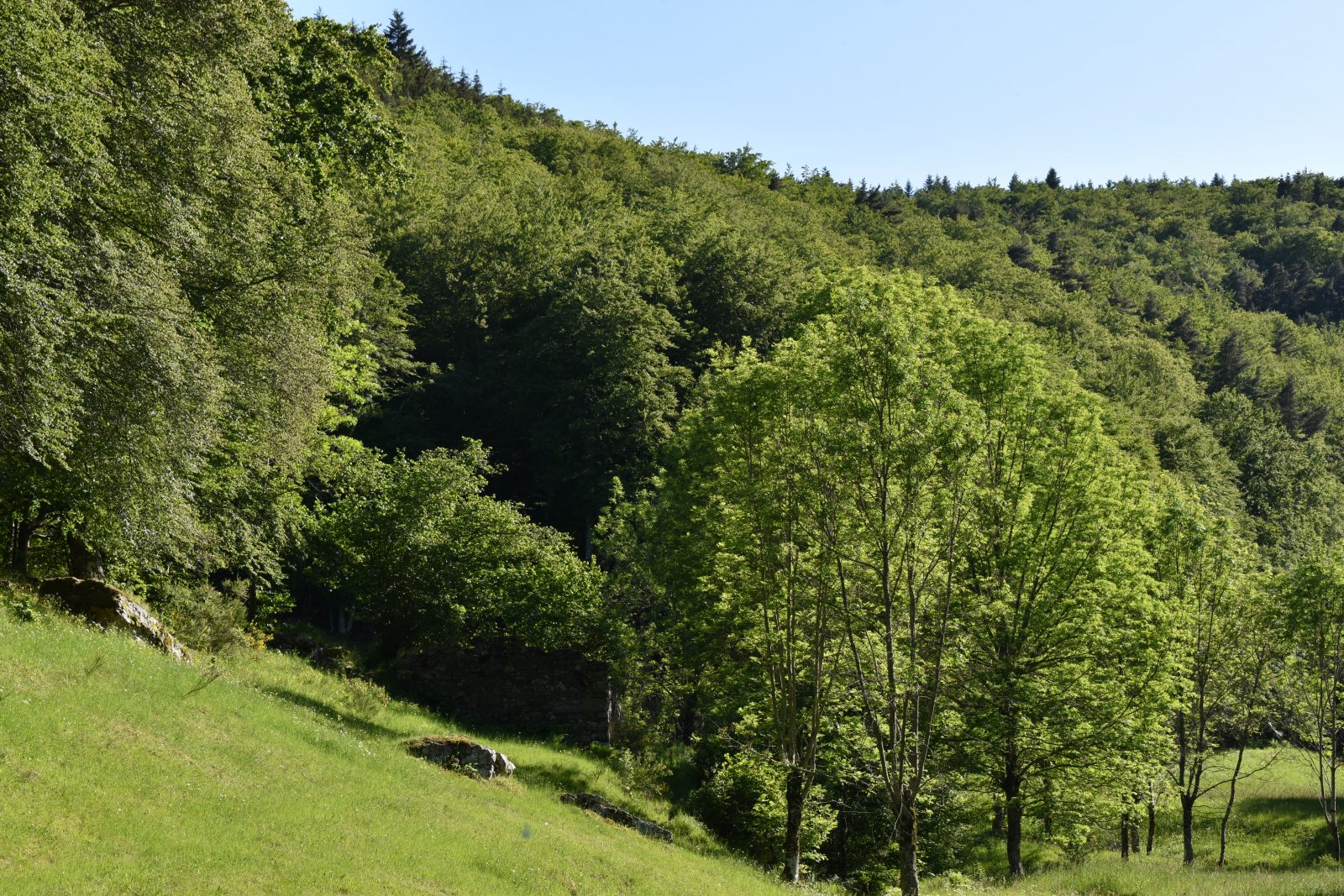 Randonnée Le chemin des écoliers de Clavières-3