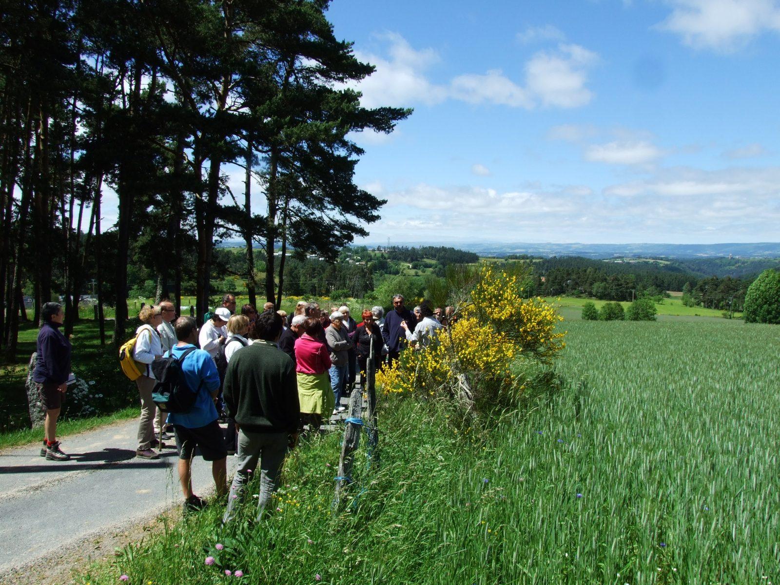 Randonnée Le Chemin des écoliers de Saint-Marc-2