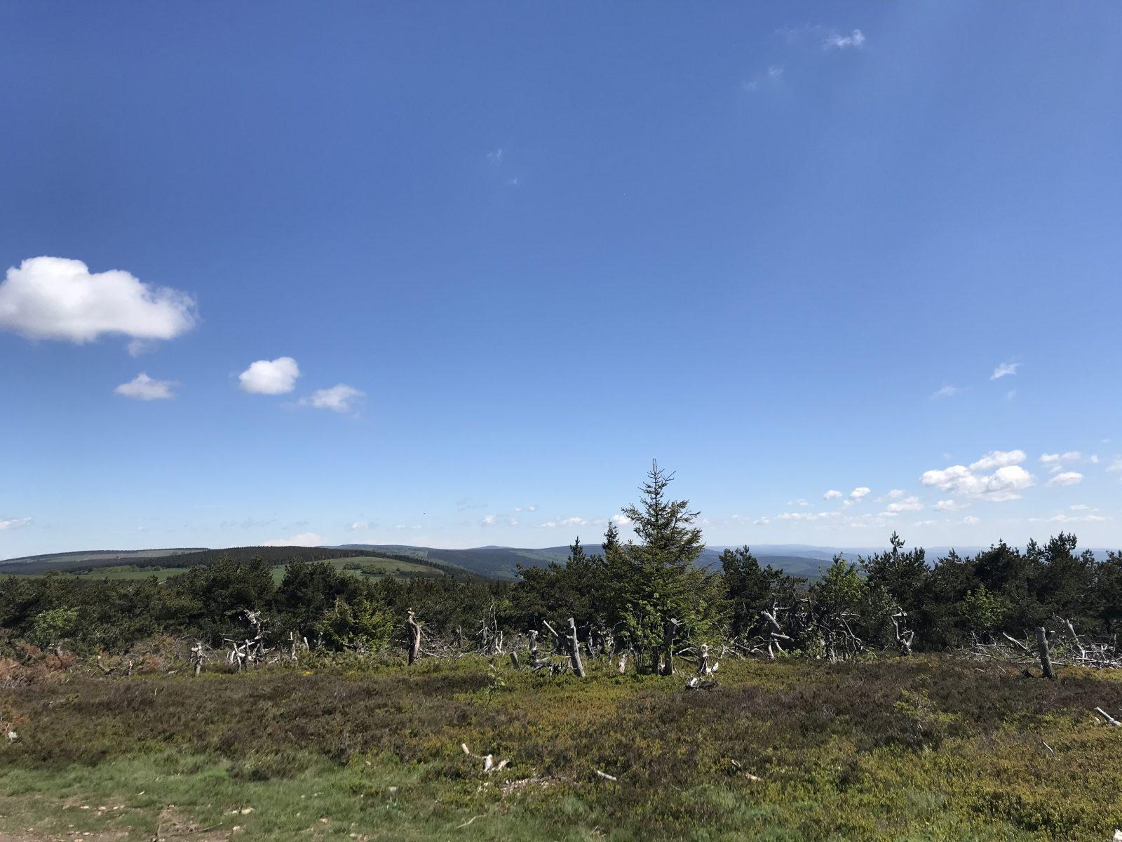 Randonnée La Forêt de la Margeride-5