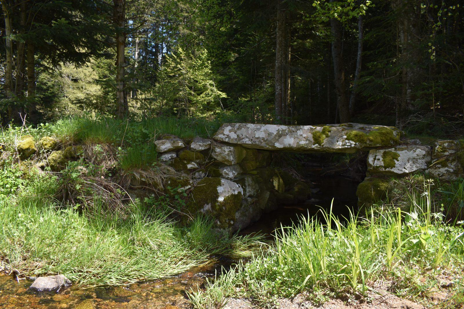 Randonnée Le Chemin des écoliers de Soulages-7