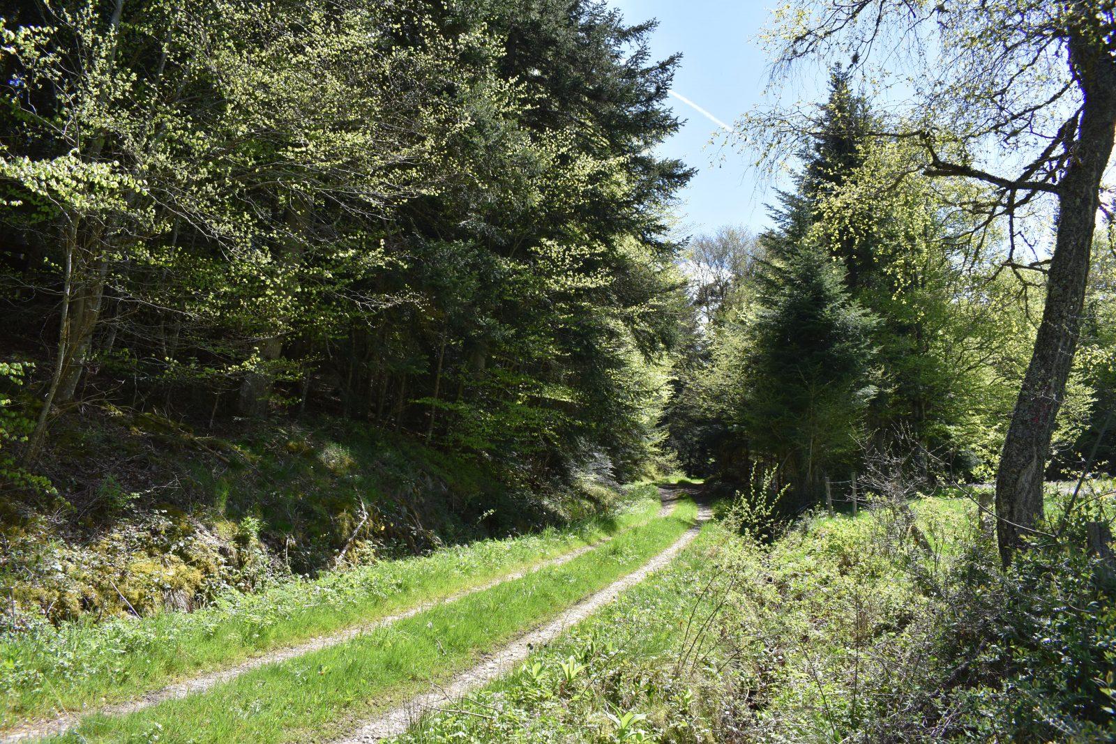 Randonnée Le Chemin des écoliers de Soulages-8